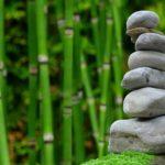 Piękny ,a także zadbany zieleniec to zasługa wielu godzin spędzonych  w jego zaciszu w toku pielegnacji.